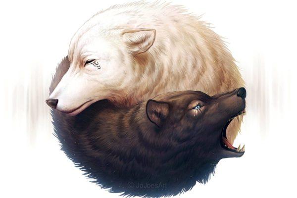 yin and yang wolves for scottshak poem origin story